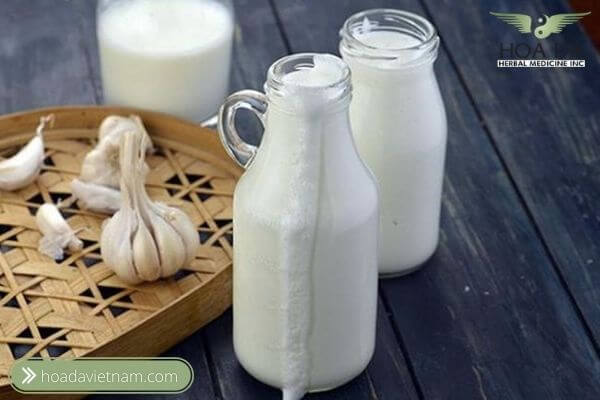 #3. Chữa đau thần kinh tọa bằng Sữa Tỏi