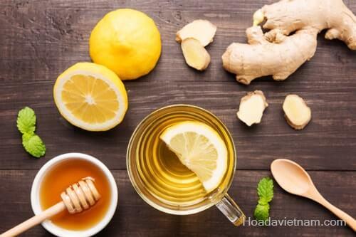 Khám phá 5 cách chữa viêm họng bằng mật ong siêu đơn giản! 2