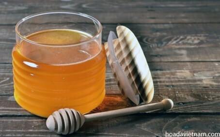 Mật ong chữa viêm họng hạt bằng cách kết hợp với các nguyên liệu tự nhiên đang được xem là biện pháp tối ưu nhất. Tìm hiểu ngay! 6