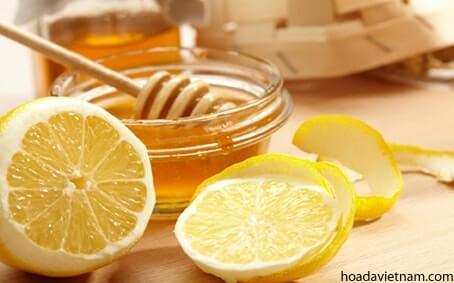 Bật mí 5 cách hay dùng Mật ong chữa viêm họng hạt 2