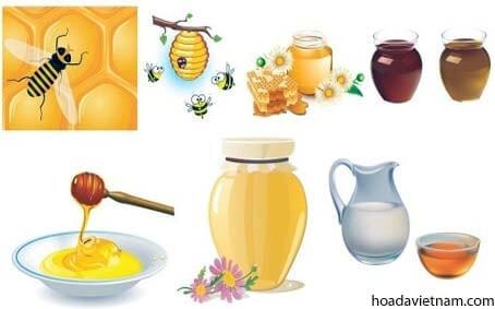 Sự thật mật ong chữa viêm họng như thế nào? 1