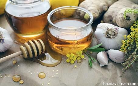 Hướng dẫn chi tiết cách dùng tỏi mật ong chữa viêm họng 1