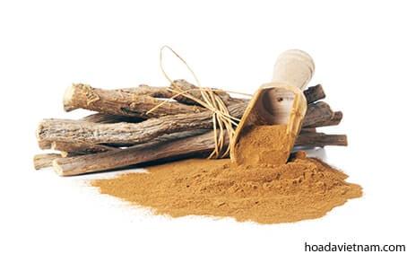 2 cách chữa viêm họng bằng thảo dược lâu đời của người phương Tây 3