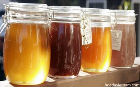 Top 10 loại mật ong diệt trừ viêm họng hiệu quả nhất4