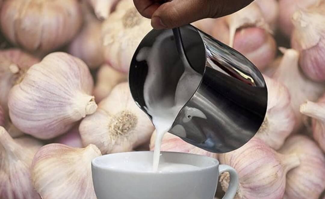 Đun nóng sữa tỏi giúp giảm độ hăng của tỏi và dễ uống hơn